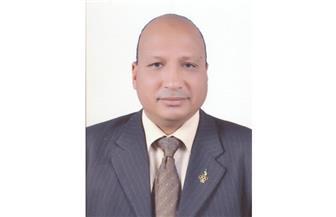 تعيين الدكتور أحمد كمال نصاري نائبا لرئيس جامعة جنوب الوادي | صور