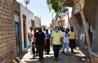 محافظ أسوان يتابع الموقف التنفيذي لمشروع «حياة كريمة» | صور