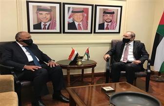 """وزير الخارجية: مصر سعت عبر """"إعلان القاهرة"""" للدفع نحو حل سياسي في ليبيا وإيجاد توافق يحقق إرادة شعبها"""