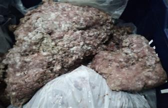 ضبط 162 كيلو لحوم مفرومة غير صالحة للاستهلاك قبل بيعها في كفر الزيات