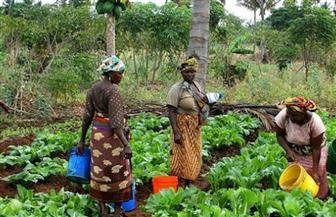 «عملاق الشرق الإفريقي الاقتصادي النائم» تخرج من تصنيف الدول المتدنية الدخل