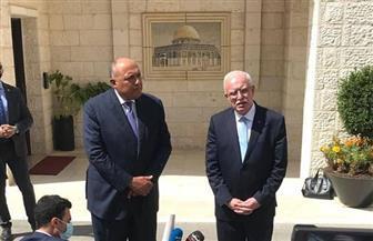 وزيرا خارجية مصر وفلسطين يجريان لقاءات صحفية بمقر الرئاسة برام الله | صور