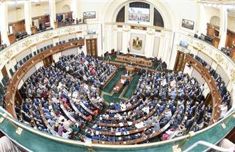 مجلس النواب يوافق على إرسال عناصر من القوات المسلحة في مهام قتالية خارج البلاد