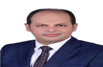 """""""الشعب الجمهوري"""": عودة مجلس الشيوخ """"ضرورية"""" وسيثري الحياة النيابية في مصر"""