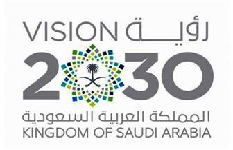 خبراء غرفة الرياض: 66% من رؤية السعودية ٢٠٣٠ تم تحقيقها بمساعدة علم البيانات