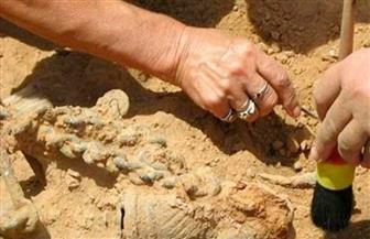 اكتشاف مجموعة قبور عمرها أكثر من 2200 سنة شمال غربي الصين