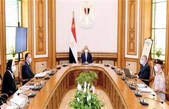 الرئيس السيسي يستعرض إستراتيجية صناعة السيارات .. ويوجه بمواصلة خطة الدولة للنهوض بصناعة الغزل والنسيج