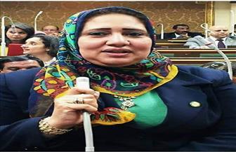 صدقي: تفويض البرلمان للرئيس السيسي يؤكد ثقة الشعب في قيادته