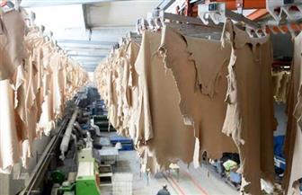 خلال 6 شهور.. 26.266 مليون دولار صادرات مصر من الجلود والأحذية والمصنوعات والملابس الجلدية