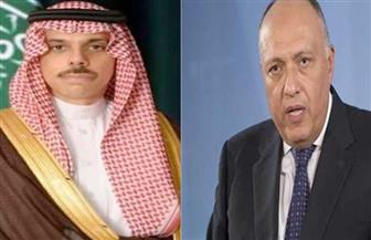 مباحثات مصرية - سعودية بالقاهرة على مستوى وزيري الخارجية