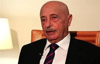 """رئيس """"النواب الليبي"""" يرفض تدخل مرتزقة تركيا في الشأن الداخلي لبلاده"""