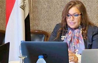 عبر تقنية الفيديو كونفرانس.. وزارة الخارجية تعقد جولة للمشاورات السياسية بين مصر والبرازيل