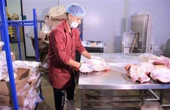 أمين عام الجمعية الشرعية: توزيع 225 طن لحم بتكلفة 16 مليون جنيه بالمجان