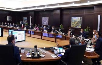 11 قرارا في اجتماع مجلس الوزراء