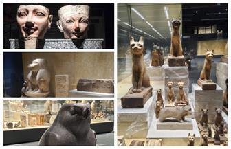 السياحة والآثار تعلن عن قرب الانتهاء من أعمال العرض المتحفي لمتحف شرم الشيخ تمهيدا لافتتاحه الجزئي | صور