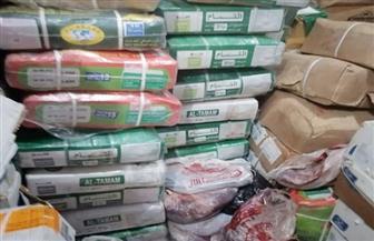 الصحة: ضبط وإعدام 118 طن أغذية ولحوم فاسدة.. وإغلاق 380 منشأة غذائية | صور