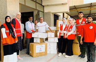 بعد 24 ساعة من انطلاقها.. مبادرة الهلال الأحمر تصل شمال سيناء | صور
