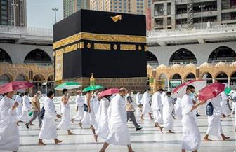 بـ10 لغات.. السعودية تتيح الرد على استفسارات الحجاج وفتاواهم آليا على مدى اليوم