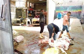 ضبط 13 مخالفة لقرار حظر الذبح في الشوارع | صور