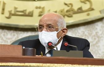 علي عبد العال: التهديدات والتحديات الإقليمية محور اهتمام القيادة السياسية