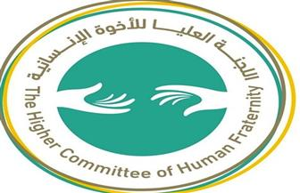 «العليا للأخوة الإنسانية» تشيد بقرار مجلس الأمن بوقف إطلاق النار لمواجهة كورونا