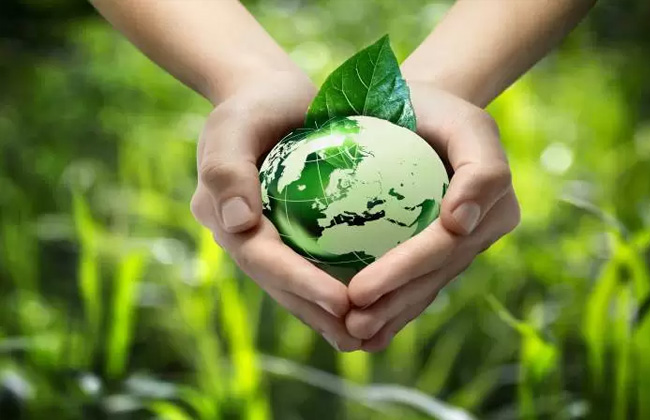 البيئة تخوض سباق الاستثمار الأخضر في مصر| إنفوجراف