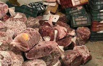الزراعة: ضبط 40 طن لحوم ودواجن وأسماك غير صالحة للاستهلاك الآدمي خلال يونيو