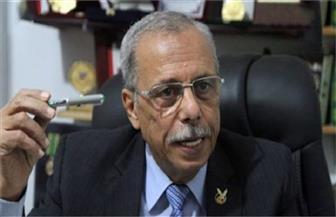 منصور:  قطر وتركيا استقطبت عددا من الشباب لتجنيدهم ضد مصر
