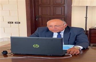 سامح شكري يشارك في اجتماع الوفد الوزاري العربي لبحث مستجدات القضية الفلسطينية