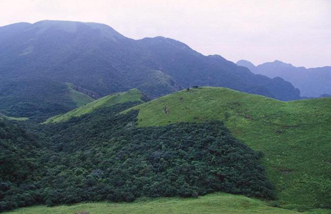 منظر خلاب لمحمية شيمنتاي الوطنية الطبيعية بقوانغدونغ.