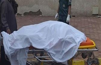 كشف ملابسات واقعة مقتل مسنة وسرقة مصوغاتها وضبط الجاني