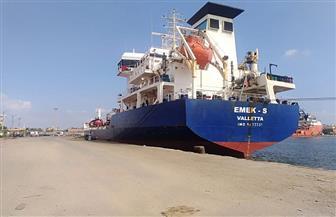 تداول 23 سفينة وشحن 4200 طن صودا كاوية بموانئ بورسعيد | صور