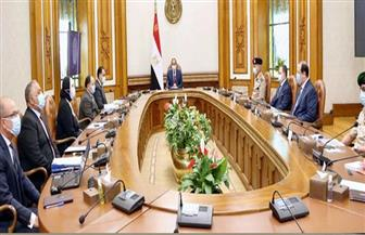 الرئيس السيسي يستعرض الموقف الإنشائي لمشروع المجمع المتكامل لإصدار الوثائق المؤمنة| فيديو