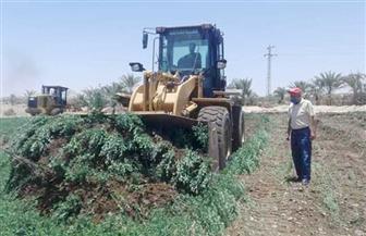 إزالة 29 حالة تعد على الأراضي الزراعية بقرية الدير جنوب الأقصر
