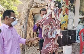 ضبط لحوم بأختام مزورة في «جهينة» بسوهاج |صور