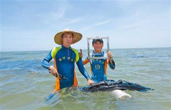 سابقة من نوعها: الصين تنجح في زراعة الأعشاب البحرية في قاع البحر