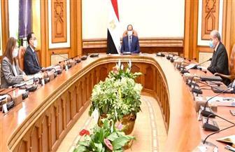 الرئيس السيسي يوجه بالاستمرار في جهود مواجهة التحديات الاقتصادية الناجمة عن تداعيات جائحة كورونا |فيديو