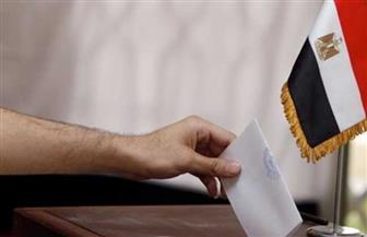 مجموعة من الإجراءات لتسهيل ممارسة ذوي الإعاقة لحقهم بالتصويت في انتخابات مجلس الشيوخ