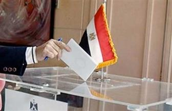 """في اليوم الثاني والأخير.. """"الهجرة"""" تتابع تصويت المصريين بالخارج في انتخابات مجلس الشيوخ"""