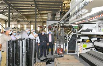 لجنة لفحص المصانع والمنشآت التي تحتوي على مواد قابلة للاشتعال بالدقهلية   صور