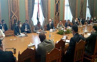 تفاصيل اجتماع اللجنة الدائمة لمتابعة العلاقات المصرية الإفريقية |صور