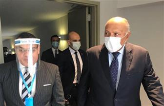 وزير الخارجية يصل بيروت فى زيارة رسمية| صور