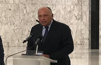 سامح شكري: مصر تعمل على تلبية أولويات لبنان في هذه المحنة وستوفر جسرا بحريا لإعادة الإعمار | صور