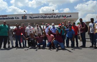 العاملون بشركات البترول يدلون بأصواتهم في انتخابات الشيوخ | صور