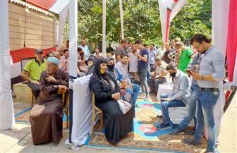قبل انتهاء التصويت في اليوم الأول.. تزايد أعداد الناخبين في الأزبكية