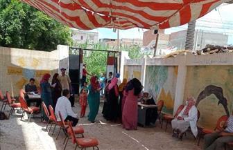 المرأة تتصدر المشهد الانتخابي في قرى البحيرة | صور