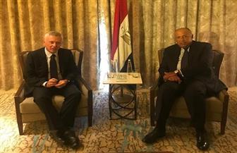 سامح شكرى يستعرض مع رئيس تيار «المردة» اللبنانى آليات الخروج من الوضع الراهن | صور
