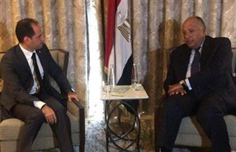 سامح شكري يبحث مع رئيس حزب الكتائب اللبناني سبل الدعم لتجاوز لبنان للمرحلة العصيبة الراهنة