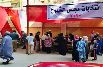 انطلاق التصويت في اليوم الثاني لإعادة انتخابات «الشيوخ»