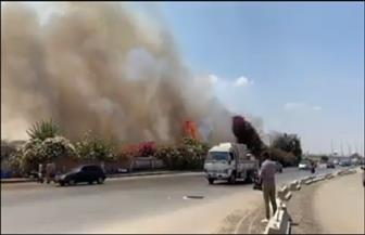 اندلاع حريق كبير في ميدان الرماية بالجيزة| صور
